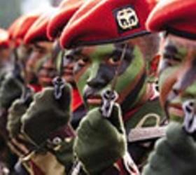 """RPKAD DALAM PROFIL BARU SEBAGAI KOPASSUS. """"Sepanjang yang bisa dicatat, peranan RPKAD di Jawa Timur tidak menonjol. Kesatuan ini muncul di Jawa Timur untuk ikut dalam Operasi Trisula, saat di wilayah tersebut terjadi gerakan-gerakan bersenjata PKI yang berskala lebih besar, terutama di wilayah Blitar Selatan (1966-1968). Di Jawa Tengah pun, meminjam paparan Ken Conboy mengenai peranan RPKAD di Jawa Tengah 1965-1966, peran itu lebih banyak sebagai katalis"""". (download flickr)"""